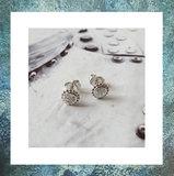 assieraad oorsteker-asstekers dames-as verwerken-oorbellen met as-gedenkoorbellen-oorbellen met asverwerking -haarlok-303S