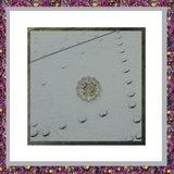 Medaillon met strass-steentjes Z_