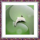Dolfijnhanger 10 _
