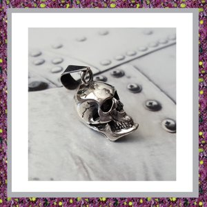 Assieraad Skull